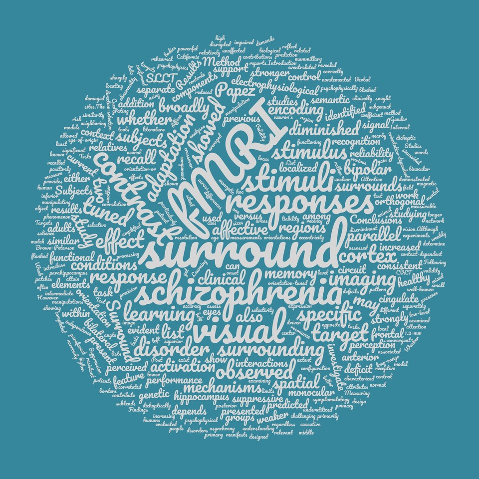 Research Focus Visual Summary Schallmo Lab